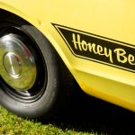 honeybee-stripe